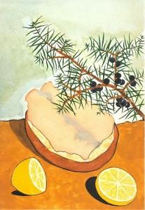 L_escalope de truite rose marinee au citron vert